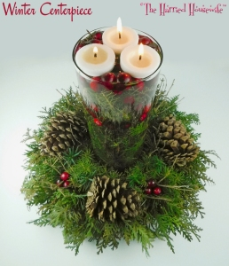 Winter Centerpiece (from Cooking, Baking, and Making)